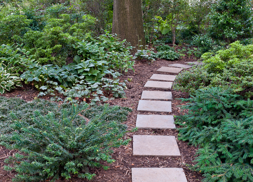 A simple flagstone path leads the eye and the visitor to explore other parts of the garden.